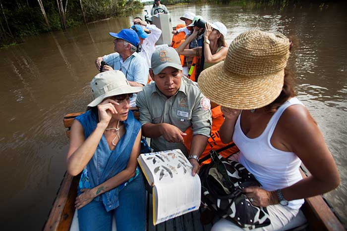 A guided boat excursion by Delfin cruises in the Peruvian Amazon to spot wildlife. A guide shows wildlife species on his book to one traveler