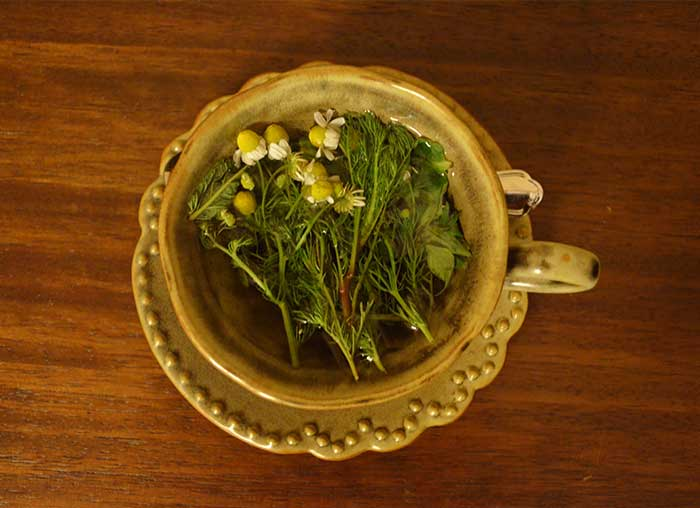Fresh made chamomile tea (from the organic gardens of Hacienda Inkaterra Urubamba Hotel in the Sacred Valley