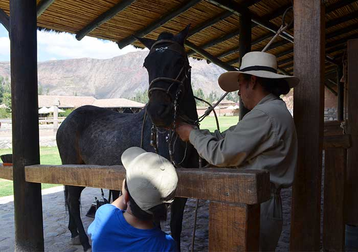 Preparing a Peruvian Paso horse for a short ride with a 6-year old kid at Sol y Luna Hotel Sacred Valley of Cusco