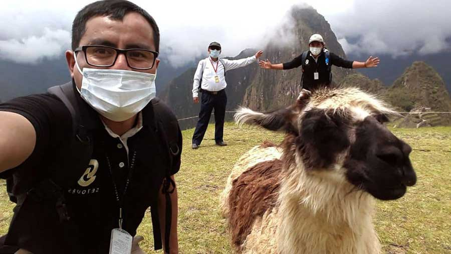 A close up of a guide wearing a mask and an alpaca while visiting foggy Machu Picchu